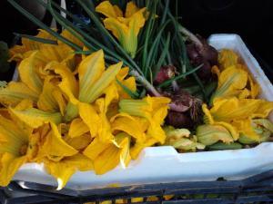 ΥΠΕΡΤΡΟΦΕΣ - SUPER FOODS - FARMA ARONIA - ΚΑΘΕΝΟΙ ΕΥΒΟΙΑΣ